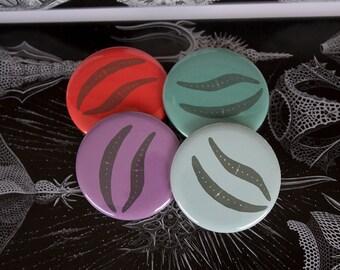 Closterium Microbe Magnet