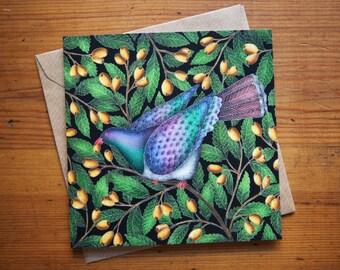 Kereru (New Zealand Pigeon) Greetings Card