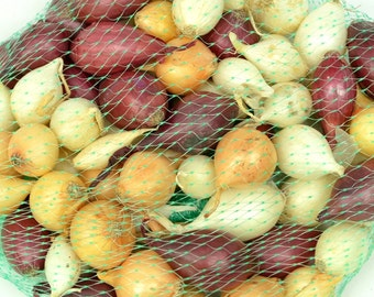 Mixed Red White and Yellow Onion Sets Organic Non-GMO | Onion Bulbs 8 oz. Spring Shipping