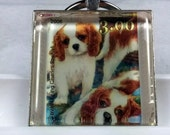 Cavalier King Charles Spaniels Puppies Dogs Blenheim Genuine Postage Stamp Pendant Key Ring