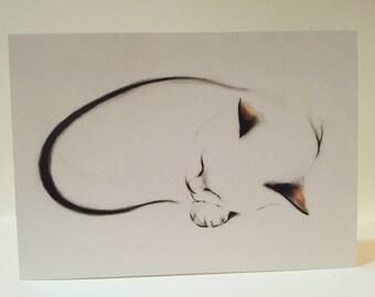 Greeting Card Fine Art Cat Card - Loop Cat