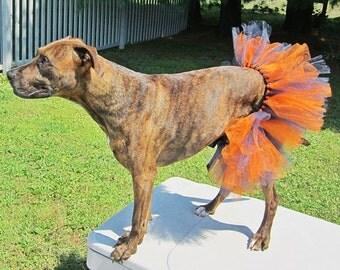 Orange and Navy Dog Tutu, Costume, Dog Accessory, Party, Dress-up, For Large Dogs