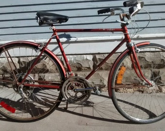 Sale, Vintage, 1975, Schwinn, Mens, Chicago, Suburban, Chestnut, 10 Speed, Bicycle, Sporting Goods, Photography Prop, RhymeswithDaughter