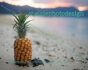 Beach Pineappple  Print - Fine Art - Hawaiian Sunset - Beach - Fruit - 5x7 8x10 11x14 Horizontal