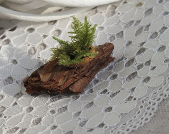 Fridge magnet - Natural - Pine bark and moss - Eco friendfly - Forest - Fairy