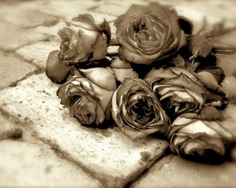 "Rose Photography, Rose Print, Sepia Flower Photo, Romantic Rose Art, Brown Cottage Wall Decor, Botanical Flower Garden Print-""Along The Way"""