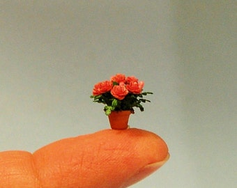 1/4 inch scale miniature-Rose plant