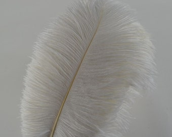 White 10pcs Ostrich Feathers 12-14 inch (30-35 cm) for Home Wedding Decoration