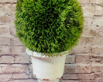 """Grass Ball Topiary """"Potted"""" In a Distressed White  Ceramic Urn"""