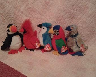 5 TY Birds