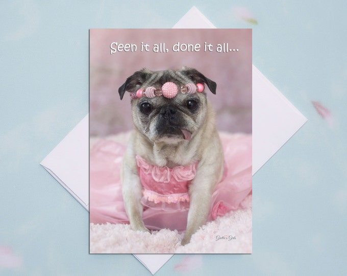 5x7 ALL OCCASION CARD Seen It All Funny Pug Card by Pugs and Kisses