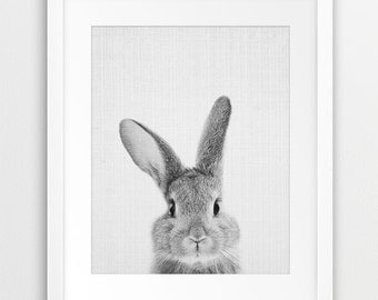 Rabbit Print, Nursery Animal Wall Art, Woodlands Animals Print, Black And White Animal Printable Art, Bunny Print, Kids Room Decor, DIY