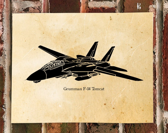 KillerBeeMoto: Limited Print Fairchild Grumman F-14 Tomcat Fighter Jet Aircraft Print 1 of 50