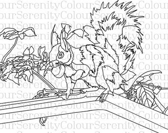 Adult Coloring Page - Squirrel - Printable Instant Download #7