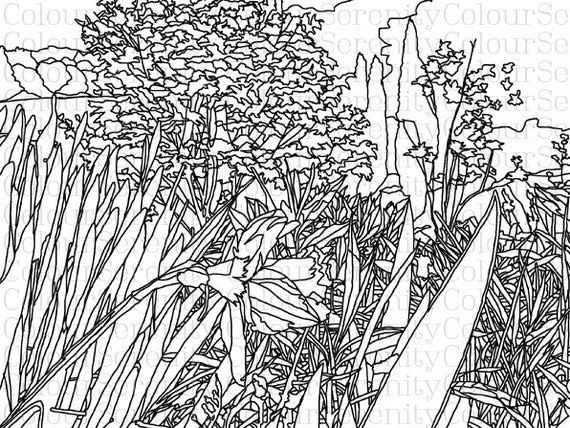 Lake Flowers Adult Colouring Page 14 Instant Download Pdf