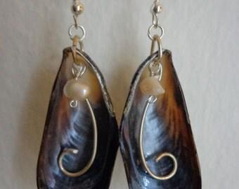 Sea Shell Pearl Earrings