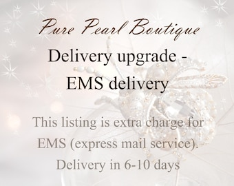 Delivery upgrade - EMS delivery
