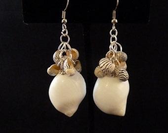 White Hawaii Shell with Brazilian Zebra Shell Cluster Earrings