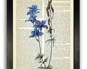 DELPHINIUM FLOWER Vintage Book Print Dictionary or Encyclopedia Page Print- Book print Blue Flower on Vintage Dictionary Book art