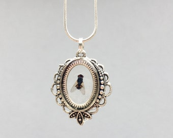 House Fly Necklace, Real Insect Bug Flies Creepy Cute Taxidermy Wiccan Jewelry, Entomology Curiosities and Oddities:BREATH OF DEATH by {118}