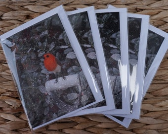 Pack of 5 Christmas Robin Greetings Cards (A6)