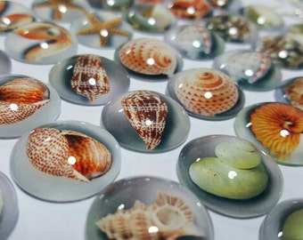 Lot of 20pcs 20mm Mixed Style Halobios Round Glass Cabochon Dome Jewelry Finding Cameo Pendant Settings