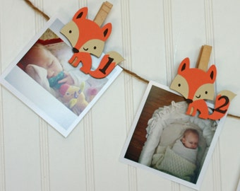 Fox First Birthday, Fox Party Monthly Photo Banner, Woodland First Birthday Party, Fox Monthly Pins, N-12 Pictures