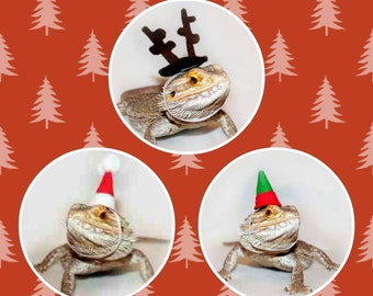 x-mas hats for bearded dragons