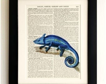 ART PRINT on old antique book page - Blue Cameleon, Vintage Upcycled Wall Art Print, Encyclopaedia Dictionary Page