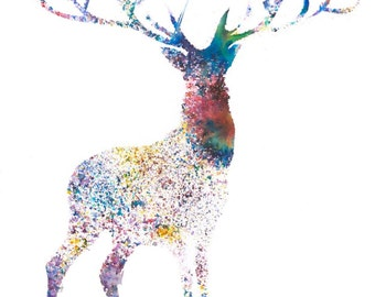 Stag - limited edition giclee print