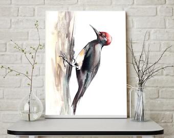 Woodpecker, fine art print of bird, woodpecker watercolor painting art, bird art, wall art