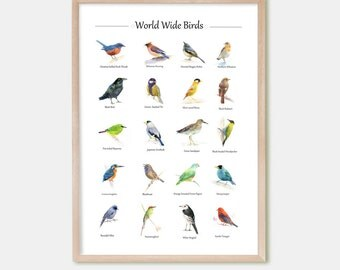 Watercolor Bird Art Poster, Bird Painting, Bird Print