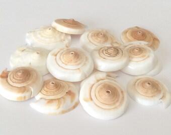Large conus shell beads, conus heads, natural shell beads, bead caps-15pc