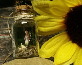Fairy necklace, captured fairy