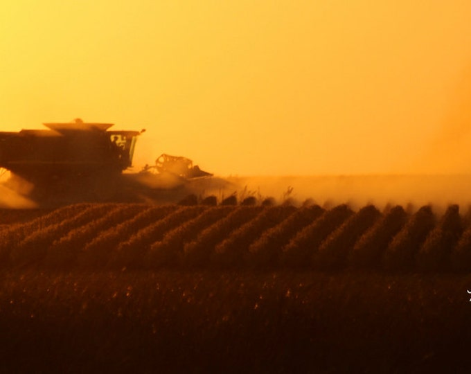 South Dakota Harvest Sunset Photography Harvest Photo Farming photo John Deere Combine Sunset Photo Metal Photo Print by Nicole Heitzman