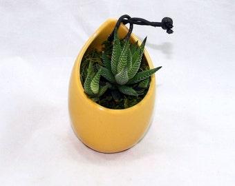 LightTerracotta Ceramic Hanging Succulent Planter