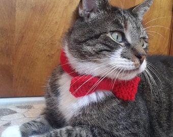 Cat or Dog Hand-Knit Bowtie