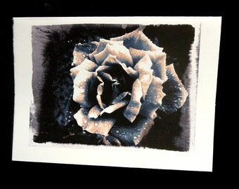 Gothic Antique Effect Black and White Rose Greeting Card. Small Blank Vintage Rose Card. Raindrops on Petals.