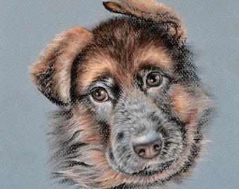 "Original pastel drawing ""German Shepherd"" Sketch"