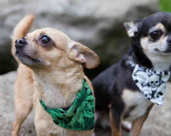 Cannabis bandana for dog collar - Weed - Marijuana - removable - to slip on a dog collar