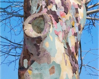 50x75cm Giclee Print of Barking Up the Right Tree a Mixed Media Painting on Canvas
