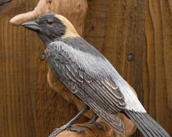 Bobolink Bird Carving