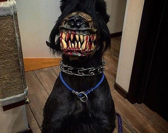 Werewolf dog muzzle. New, different sizes. Zombie dog muzzle. Scary dog muzzle with teeth