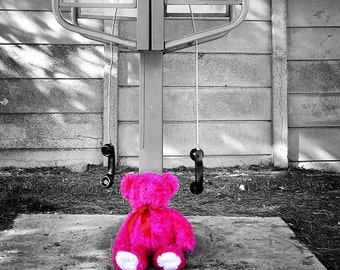 Pink Teddy Bear at Telephone Booth