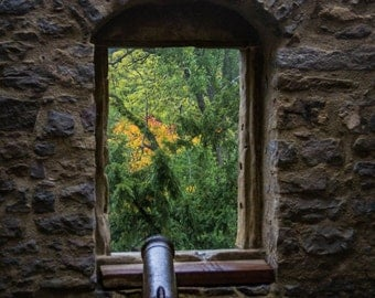 Medieval Canon in the Castle Window