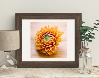 Color Photography, Orange Dahlia Flower, Country Living Decor, Farmhouse, Wall Art, For the Kitchen, Gardening,