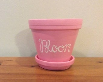 Bloom Flower Pot