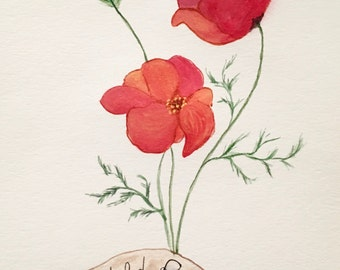 Wild Poppy Watercolor Painting Print