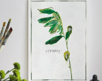 Kitchen Herb Print - Rosemary
