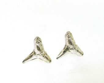 Shark Teeth Earrings, Lookin' Sharp, silver stud earrings, post earrings, shark tooth jewelry, beach jewelry